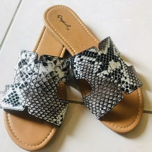 Shoes - LAST ONE SIZE 10 NWT NIB Snake print flat sandals
